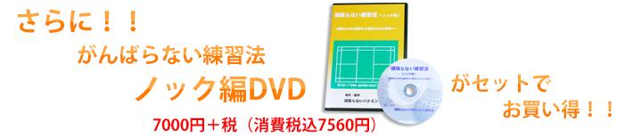頑張らない練習法ノック編DVD付き!
